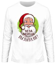 Мужская футболка с длинным рукавом Вызывали деда мороза?