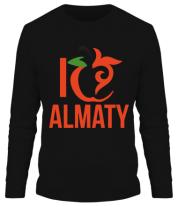 Мужская футболка с длинным рукавом ALMATY