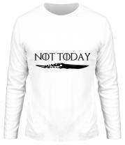 Мужская футболка длинный рукав  Game of Thrones: not today