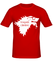 Мужская футболка  Summer is coming