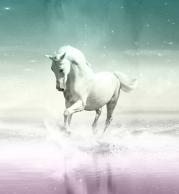 Футболка поло мужская 3D Лошадь